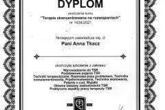 dyplom-TSR-1