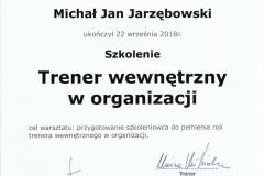 Trenerwewnetrznyworganizacji-MJ-1